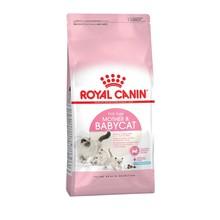 Royal Canin Mother & Babycat корм для котят от 1 до 4 месяцев, 2 кг