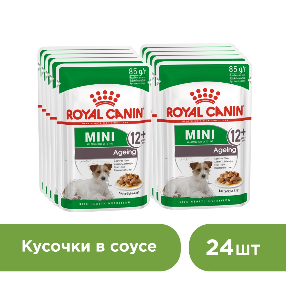 Dog wet canned food Royal Canin Mini Aging 12+ spider for dogs of small breeds over 12 years old (sauce), 24*85 g. cat wet food royal canin instinctive 7 spider for cats over 7 years old pieces in sauce 24 85 g