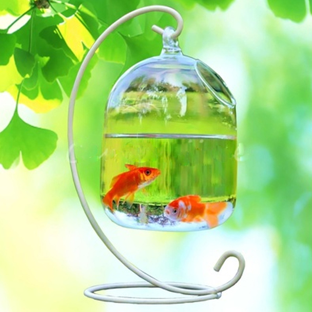 Clear Hanging Glass Aquarium Fishbowl Fish Tank Flower Plant Vase Handmade Decor Hanging Bowl Home Wall Decor without Hanger 3