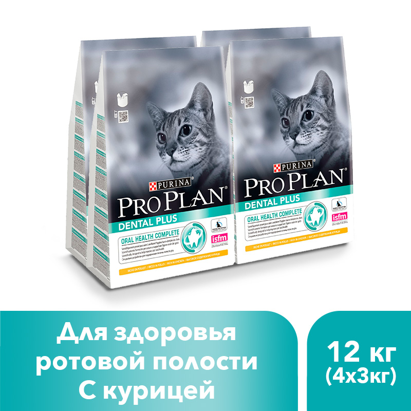 Dry Pro Plan food for cats to maintain oral health with chicken, 12 kg julie gauthier chicken health for dummies