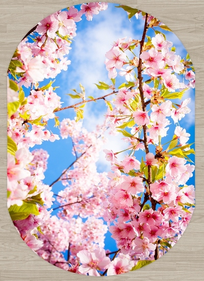Else Blue Sky Spring Pink Flowers On Tree Flowers 3d Print Non Slip Microfiber Living Room Modern Oval Washable Area Rug Carpet