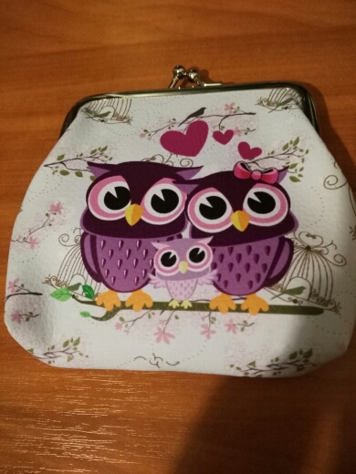 Fashion Women Lady Retro Vintage Owl Small Wallet Hasp Purse Clutch Bag 100% brand new and high quality Shop photo review