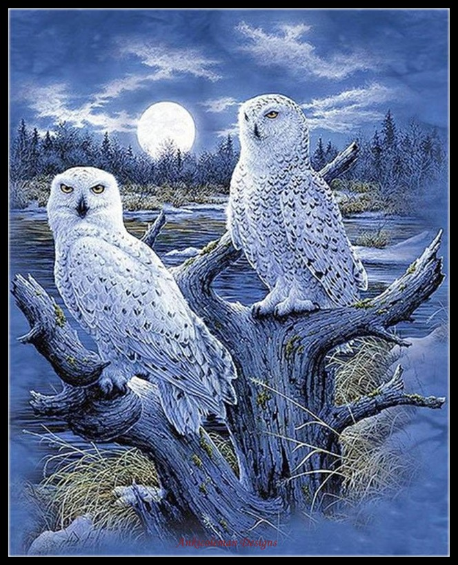 Embroidery Counted Cross Stitch Kits Needlework - Crafts 14 Ct DMC DIY Arts Handmade Decor - Snowy Owls