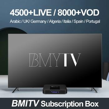 1/3/6/12 meses suscripción IPTV Francia ruso sueco holandés Suecia francés  árabe 6000 vivo VOD