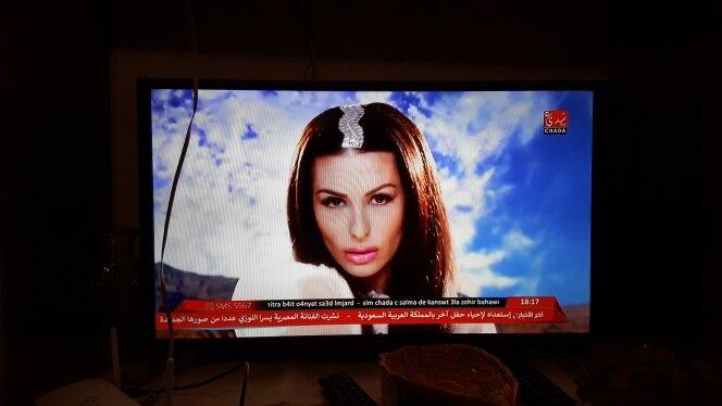 Leadcool IPTV Франции Box Android Франции арабский IPTV Rk3229 Leadcool QHDTV подписка 1 год Бельгии голландский арабский Франции IPTV