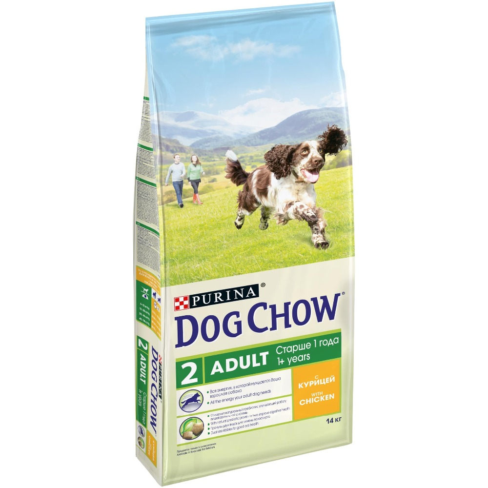Dog Chow dry food for adult dogs over 1 year old with chicken, 14 kg the 1 000 year old boy