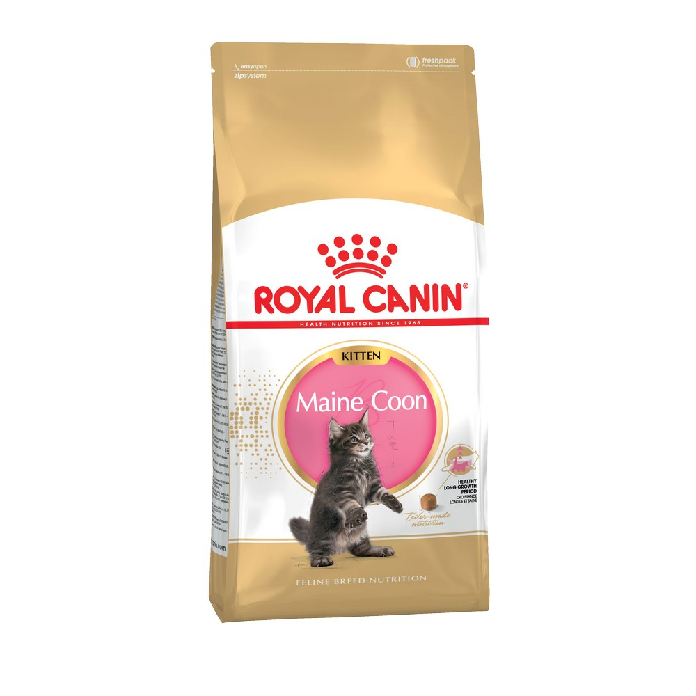 Kittens food Royal Canin Maine Coon Kitten, 2 kg cat wet food royal canin kitten sterilized kitches for kittens pieces in sauce 24 85 g