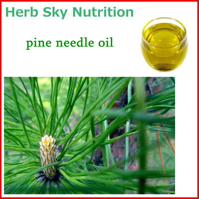 100% Natural&Pure Pine needle Oil with free shipping, Virgin Oil 100pcs box zhongyan taihe acupuncture needle disposable needle beauty massage needle with tube