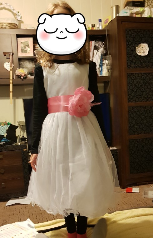 2-12 Years Kids Dress for Girls Butterfly  Wedding Little Baby Girl Birthday Dress Elegant Princess Party Pageant Formal Gown