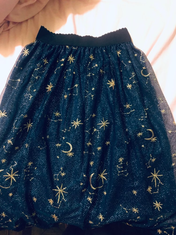 Flectit Gold Moon Star Embroidered Tulle Skirt Vintage Semi Sheer Fabric High Waist Pleated Midi Skirt For Women Ladies photo review