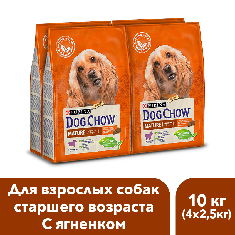 Dog Chow dry food for adult dogs over 5 years old with a lamb, 10 kg. dog chow dry food for adult active dogs over 1 year old with chicken 14 kg