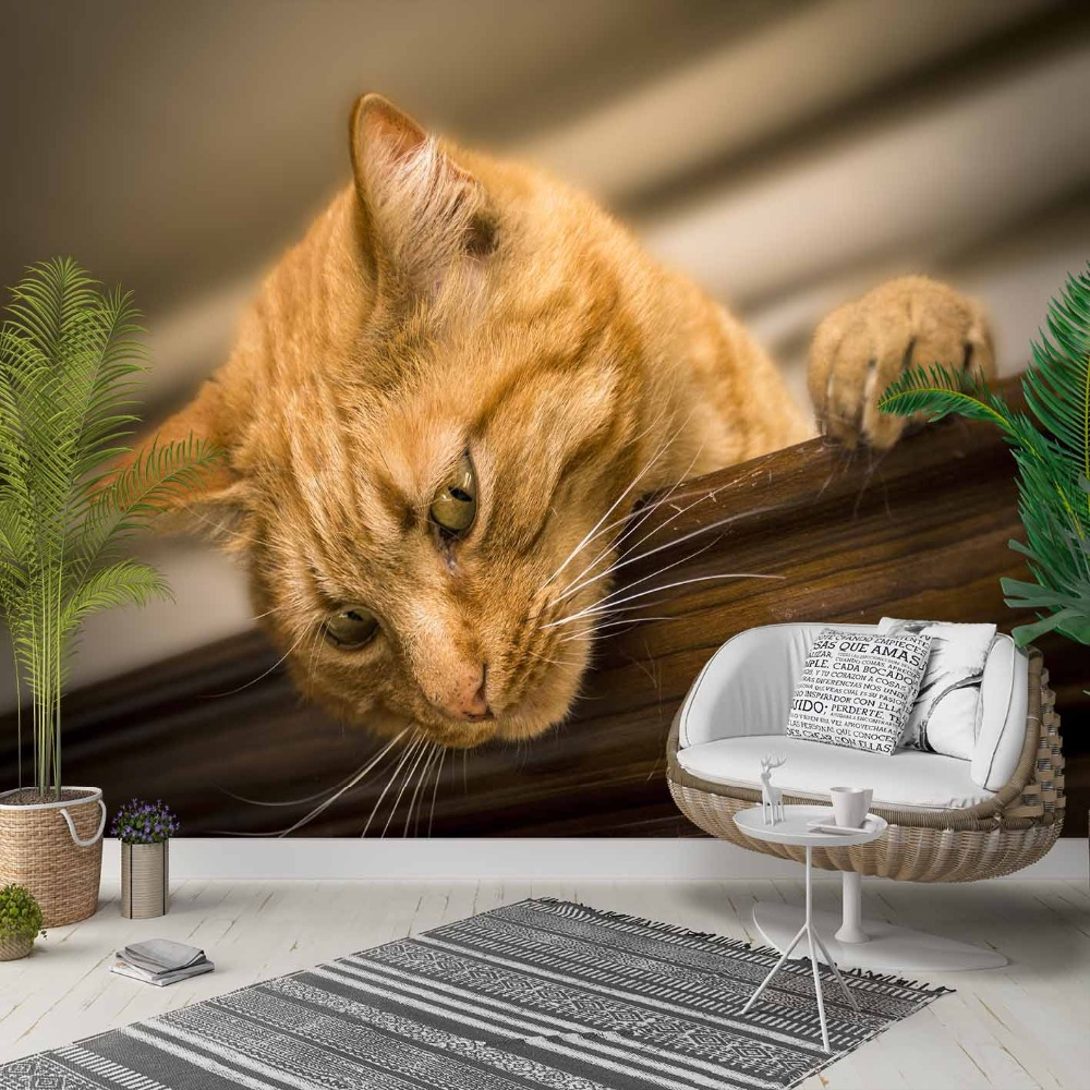 Else Brown Yellow Kitten Cat Cute Animals 3d Photo Cleanable Fabric Mural Home Decor Living Room Bedroom Background Wallpaper