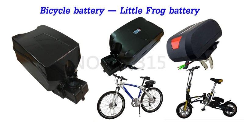 little-frog-bottom