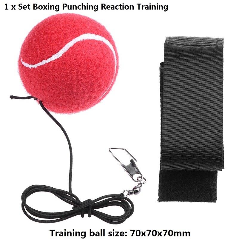 Type D Training Ball