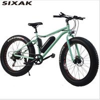 SIXAK wind catching bird snow electric vehicle 21 speed 48V 13.5AH 500W strong electric bicycle bicycle for men and women