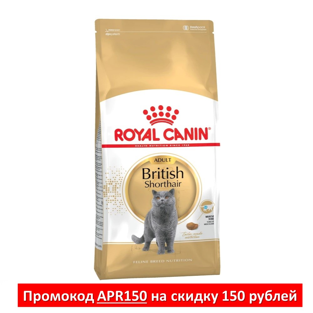 Cat Food Royal Canin British Shorthair Adult, 4 kg