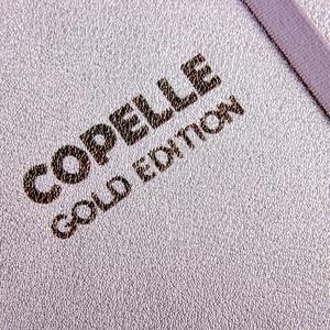 Image 5 - COPELLE GOLD EDITION Chấm Bi Hàng Tháng Planner/Máy Tính Xách Tay/Viên Đạn Bao Lưới Dot Tạp Chí/Bujo