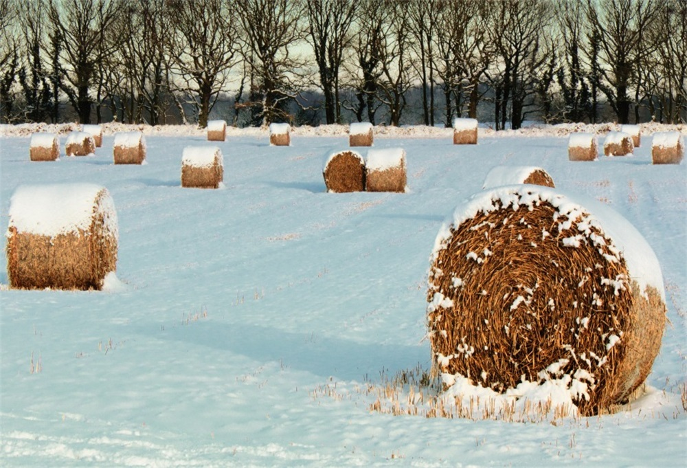 Laeacco Winter Snow Field Hay Bale Scene Photography Backgrounds Customized Photographic Backdrops For Photo Studio