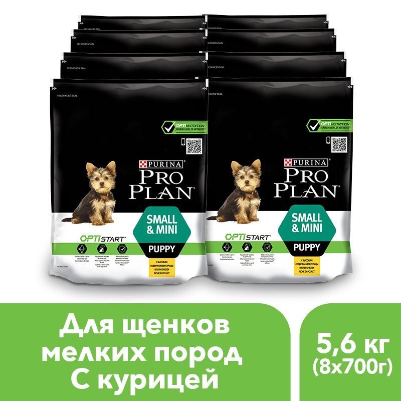 Dry food Pro Plan for puppies of small and mini breeds with the OPTISTART complex with chicken and rice, 5.6 kg. pro svet light mini par led 312 ir