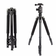 HolaFoto T1 62 Inch Transportable Aluminum Alloy Tripod With 360 Panorama Ball head &1/Four Fast Launch Plate for DSLR Cameras
