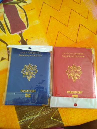 Klsyanyo for France Passport Holder PU Leather Covers for France Men Women French Passports Organizer for Travelling photo review