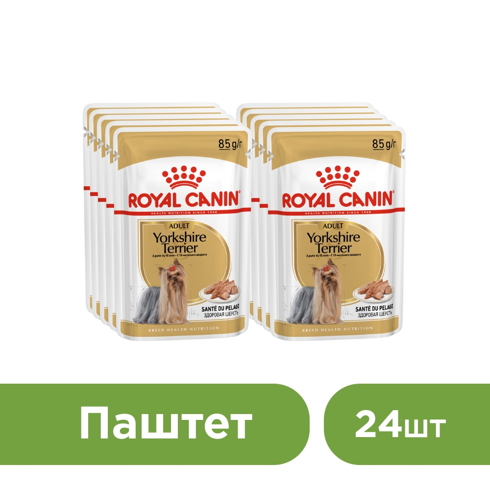 Dog wet canned food Royal Canin Yorkshire Terrier Adult spider for Yorkshire terrier breed dogs (pate), 24*85 g. цены онлайн