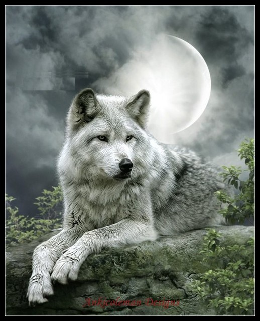 Night Wolf   Counted Cross Stitch Kits   DIY Handmade Needlework For Embroidery 14 ct Cross Stitch Sets DMC Color