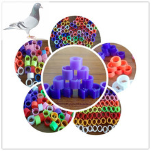 100 Pcs Pet bird Accessories foot plastic ring pet bands pigeon poultry