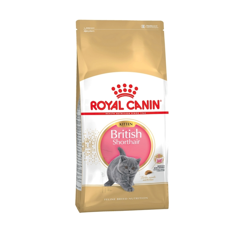 Food for kittens Royal Canin British Shorthair Kitten, 2 kg цена и фото