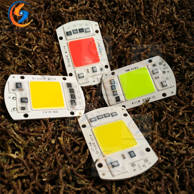 CHARLES LIGHTING COB LED 50W Bulb Lamp 220V Smart IC Driver Cold Warm White SMD Integrated Diodes Chip lamp light Source