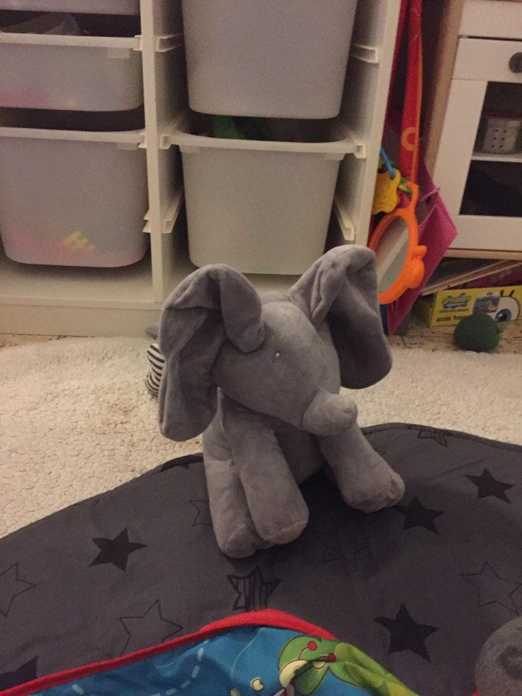 Peek A Boo Elephant photo review