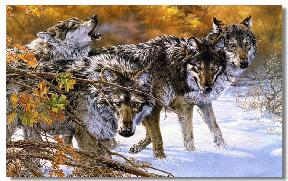 Wolves In Snow Window View Decal WALL STICKER Home Decor Art Mural Animals