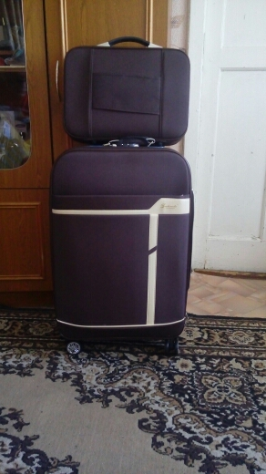 24 Inch  Spinner Suitcase Travel Rolling Luggage Suitcase Set Business Travel Rolling Baggage Bag Wheeled Trolley Bags