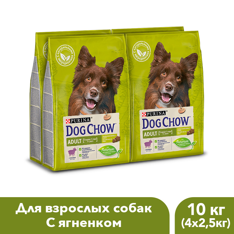 Dog Chow dry food for adult dogs over 1 year old with a lamb, 10 kg. dog chow dry food for adult active dogs over 1 year old with chicken 14 kg
