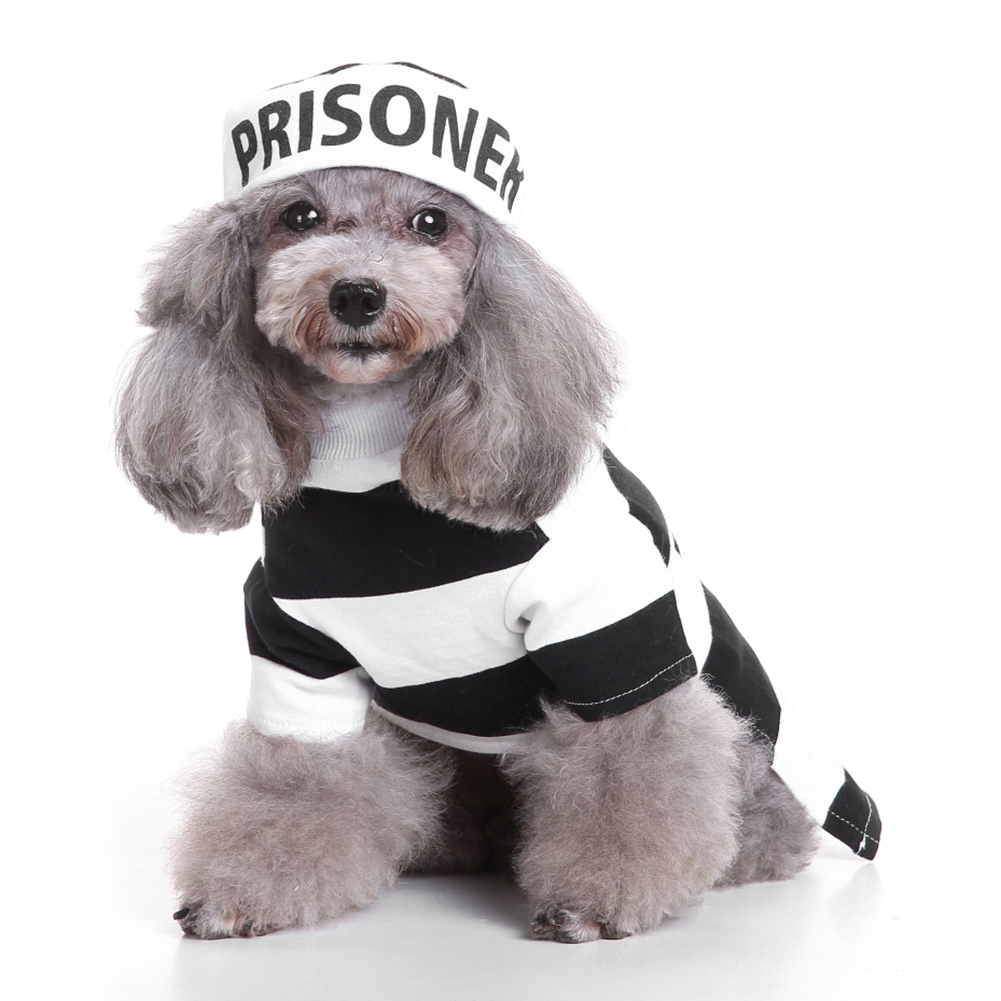 Popular Prison Hat-Buy Cheap Prison Hat lots from China Prison Hat ...