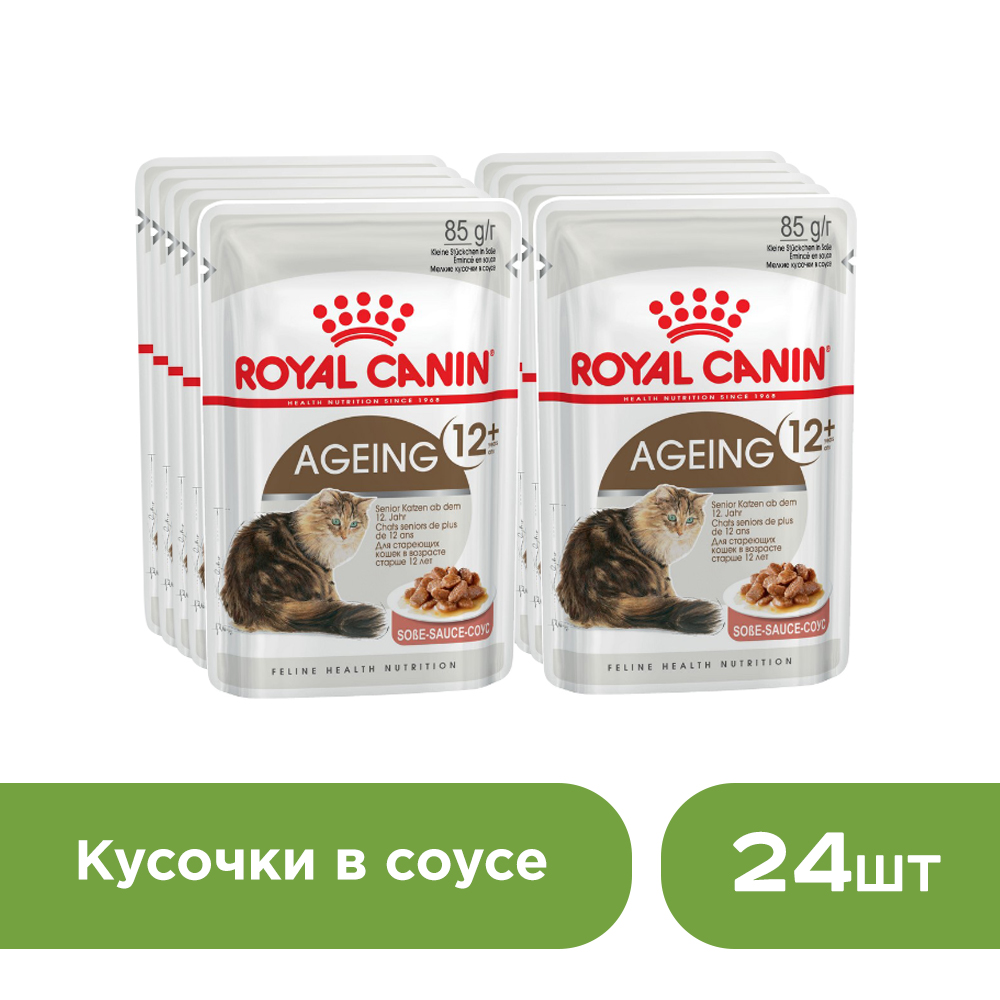 Cat wet food Royal Canin Aging +12 spider for cats over 12 years old (pieces in sauce, 24*85 g.) cat wet food royal canin instinctive 7 spider for cats over 7 years old pieces in sauce 24 85 g