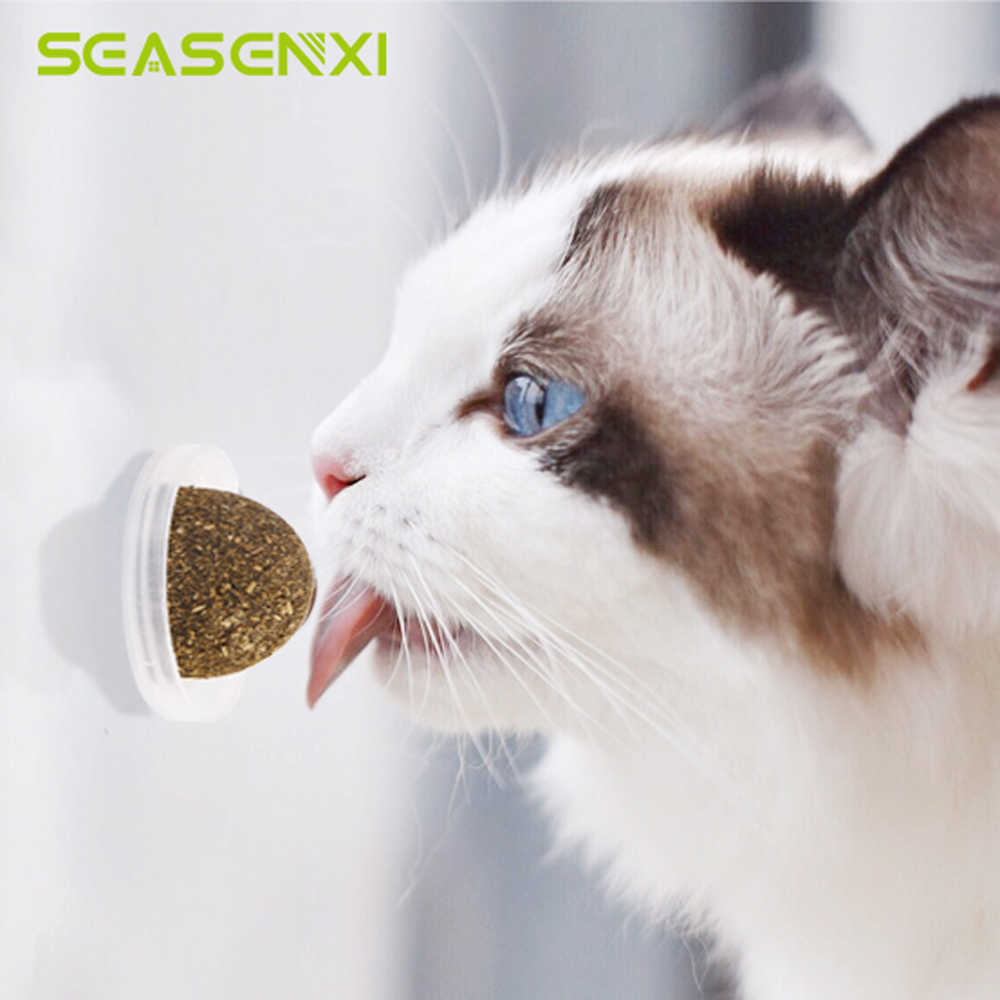 Natural Catnip Toys For Cats Crazy Healthy Cat Toys For Kitten Edible Treating Cleaning Teeth Cat Supplies Pet Toy Pet Products