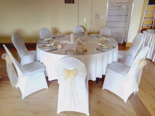 100 50 Pieces Cheap Wholesale Universal White Chair Covers