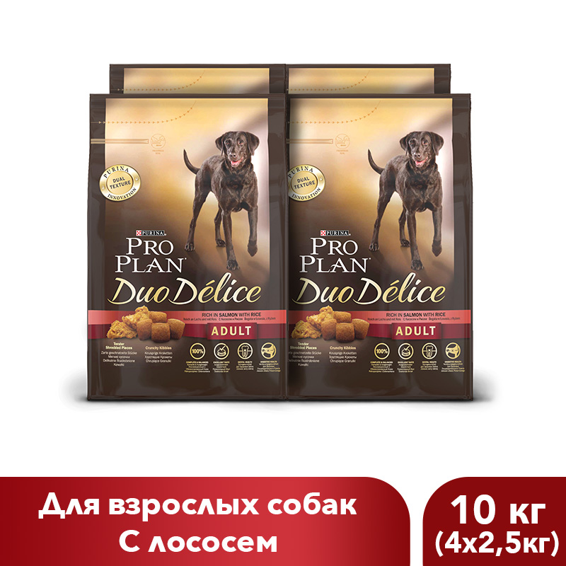 Dry food Pro Plan DUO DELICE for adult dogs with salmon and rice, 10 kg. corn puffing machine rice snacks food puffed extrusion machine