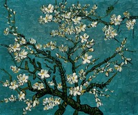High quality Oil painting Canvas Reproductions Branches of an Almond Tree in Blossom by Van Gogh Painting hand painted