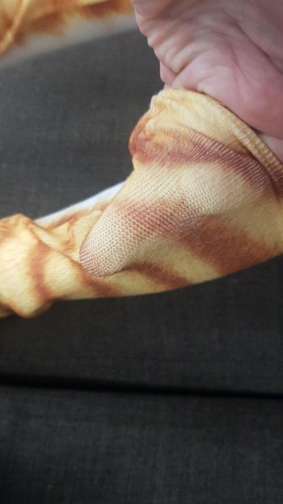 собака Paw; ручка зебра; мода;