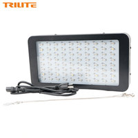 TRILITE 240W LED Grow Light 80x3w Full Spectrum Panel Growing Lamp for Hydroponic Indoor Plants Veg and Flower