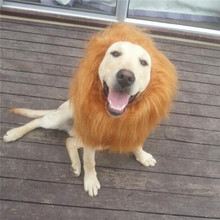 halloween costume pets cats dogs costumes lions wigs big dog accessories puppies highend faux