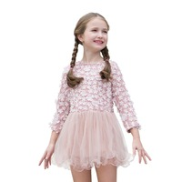 Toddler Kid Girls Dress 3D Floral Lace Dresses Long Sleeve Wedding Party Dresses for Princess Pink Ball Gown Mesh Dress Clothes