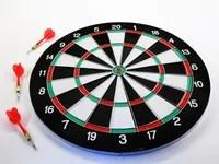 Darts dartboard indoor outdoor fun 17 inch big board with dart flights Plastic Metall 341 325