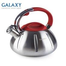 Чайник Galaxy GL 9208(Объем 3 л, Высококачественная нержавеющая сталь, подходит для всех типов плит