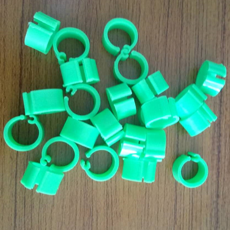 Chicken Hen Pigeon Clip On Leg Ring Plastic Foot Rings Poultry Parrot Band (Green)