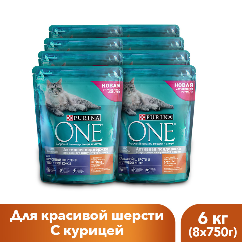 Dry feed Purina ONE for cats for beautiful wool and control the formation of hairballs with chicken and whole grains, 6 kg. dry control