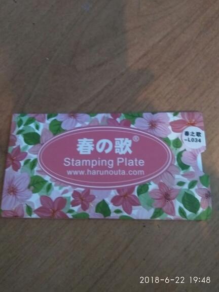 1 шт. 12*6 см прямоугольник штамповка плиты линии цветочный узор маникюр Дизайн ногтей печать изображения пластина L034