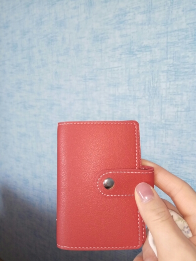 Cute 26 Slots Card Holder Wallet Women Lovely Card Organizer Wallet Creditcard Holder Dutch Travel Wallet for Credit Cards photo review